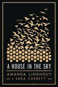 a-house-in-the-sky